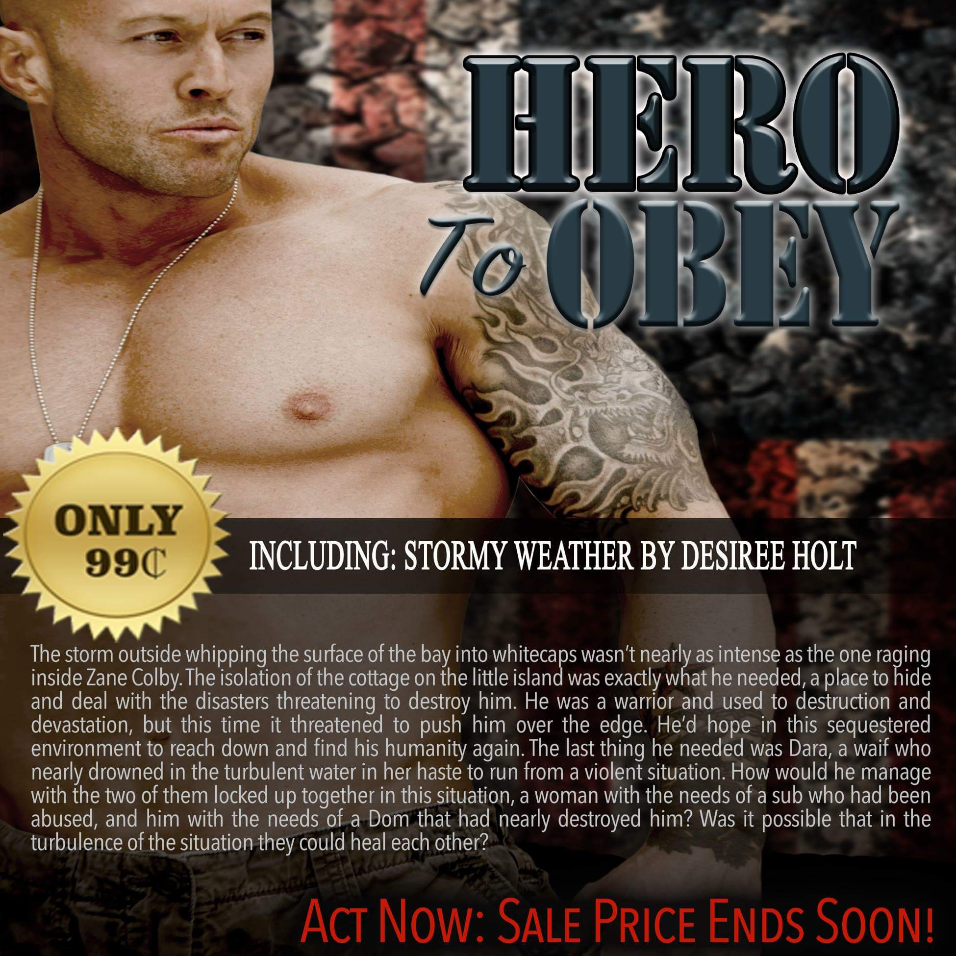 Hero To Obey Book Cover Model Actor John Joseph Quinlan by Desiree Holt #JohnQuinlan #Hero2obey